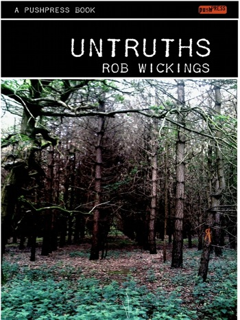 UNTRUTHS small cover