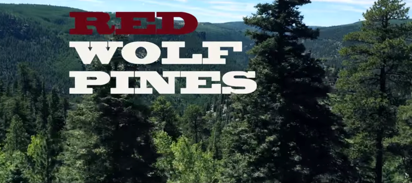 Welcome… To Red Wolf Pines!